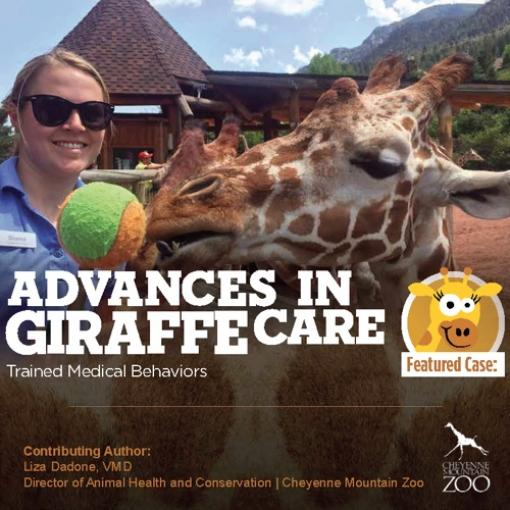 Abaxis Large Animals Vetcom Giraffe Care